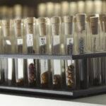 Reagenzgläser mit Samenproben (Foto: Thomas Hartmann, Universitätsbibliothek Mainz)