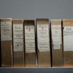 Akten (Foto: Thomas Hartmann, Universitätsbibliothek Mainz)