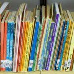 Literatur in afrikanischen Sprachen