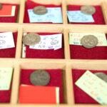 Lade mit Münzen der Dynastie der Severer (Foto: Peter Pulkowski)